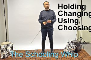 schoolingwhip