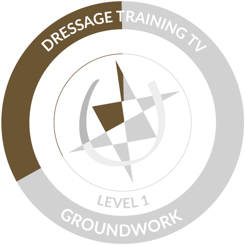 Groundwork Level 1 Module 1 Completed Icon