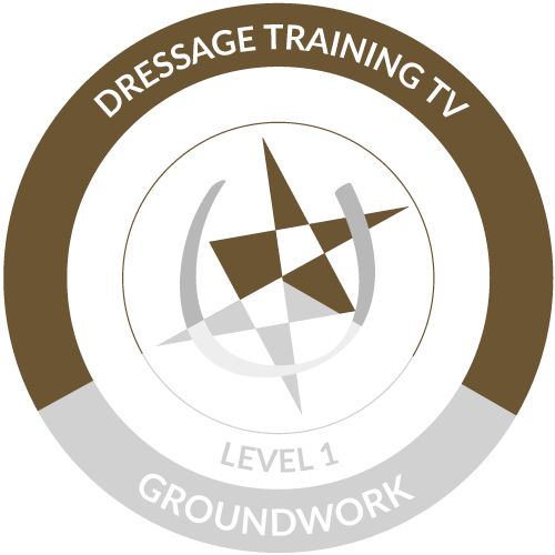Groundwork Level 1 Module 2 Completed Icon
