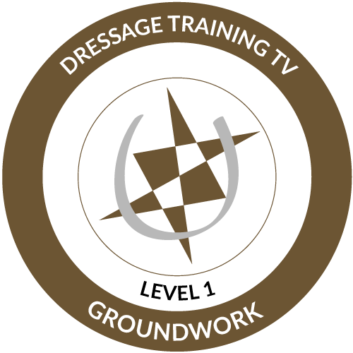 Groundwork Level 1 Completed Icon