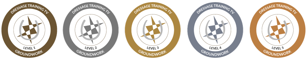 groundwork certification programme