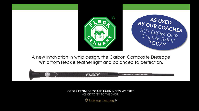 Fleck Carbon Composite Whip