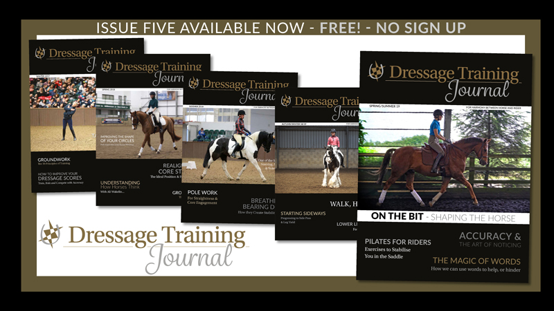 Dressage Training Journal