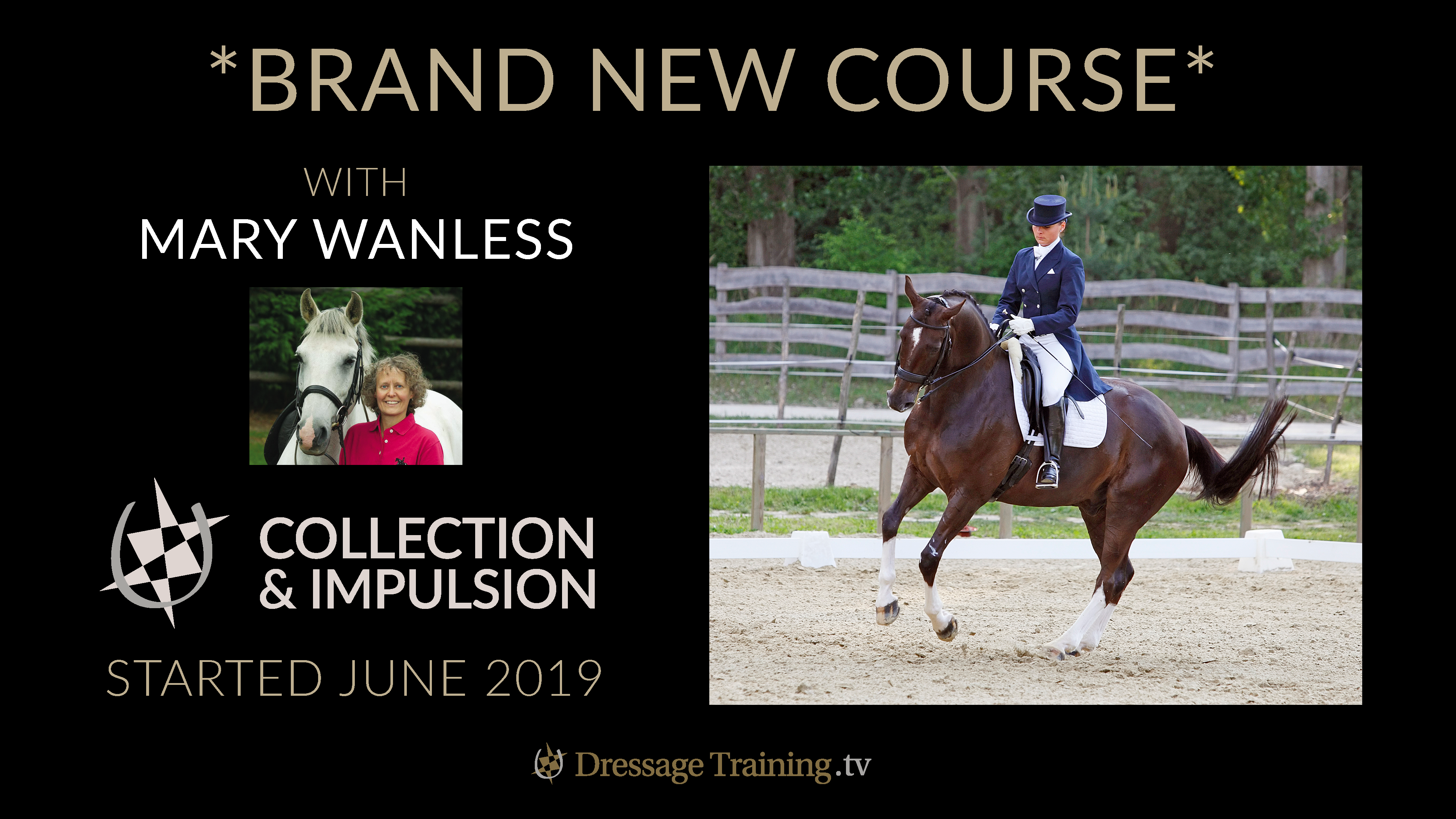 Dressage Training TV - Dressage Training For All