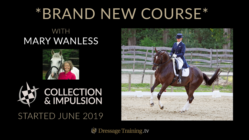 New Mary Wanless Course Collection and Impulsion