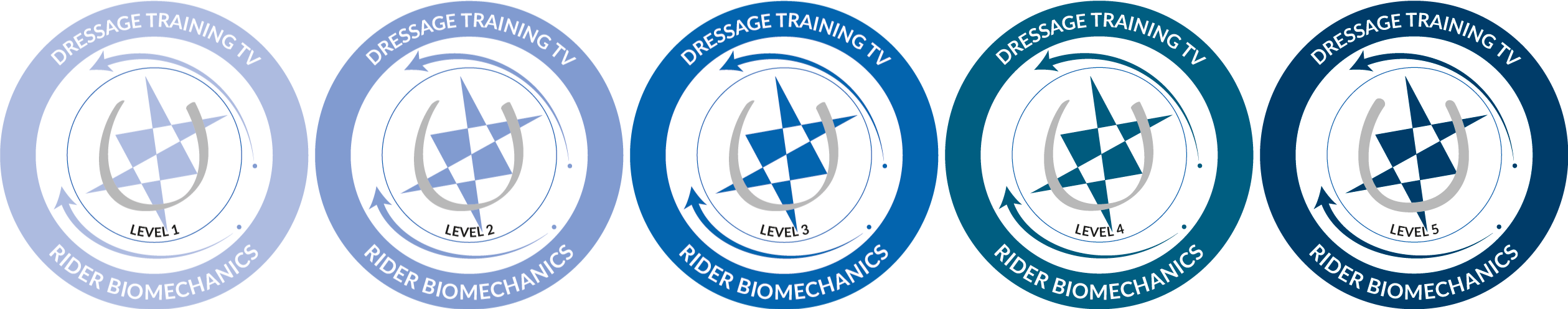 rider biomechanics certification programme