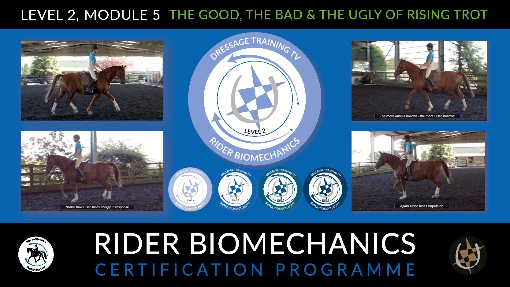 Rider Biomechanics Certification Programme